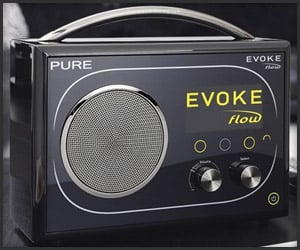 Pure Evoke Flow Radio