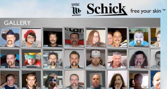 Website: Schick Freestyle