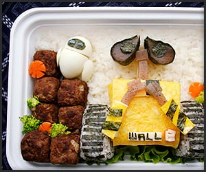 Obento Lunch Boxes