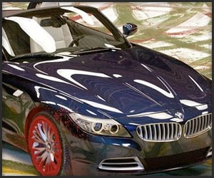 2010 BMW Z4 Art Car