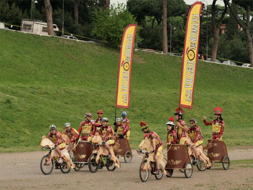 Modern Roman Chariot Race