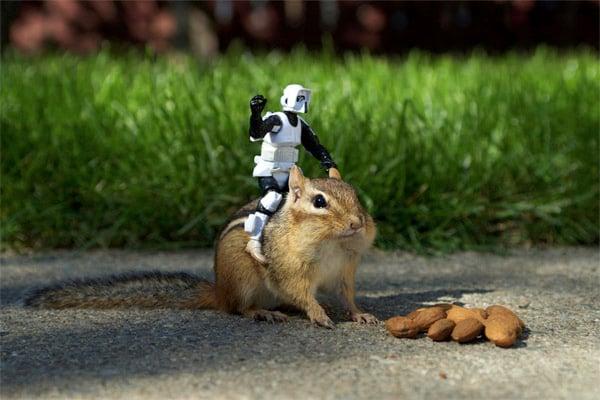 Chipmunks x Star Wars