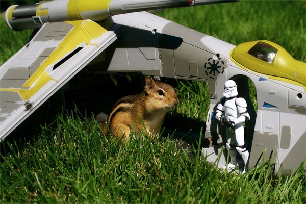 Chipmunks x Star Wars