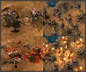 Dying Video: Starcraft II