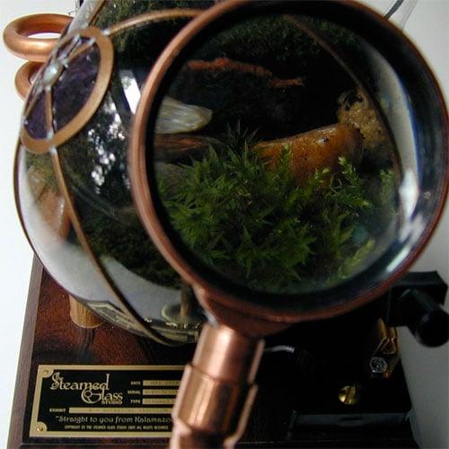 Botanical Vasculum
