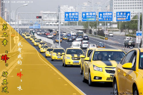 Chinese Bumblebee Meet