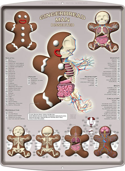 Gingerbread Dissected