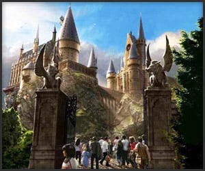 The Wizarding World