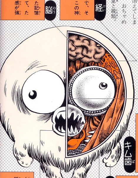 Folk Monster Anatomy