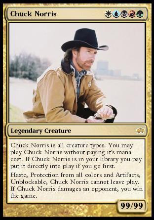 Chuck Norris Fact Book