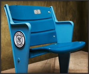 Yankee/Texas Stadium Seats