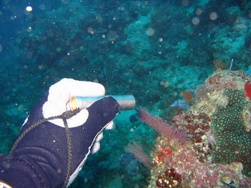 VersaTi Underwater Flashlight