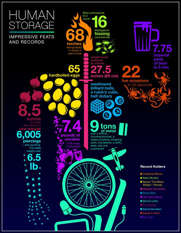 Infographic: Human Storage