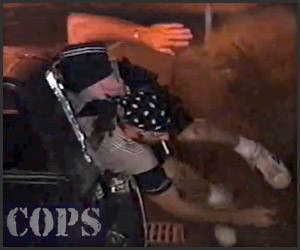 The Very Best of COPS