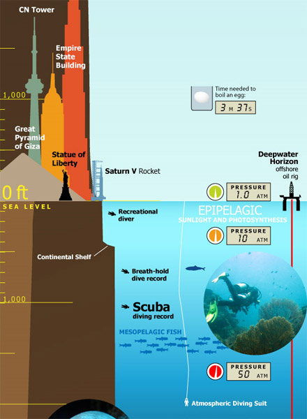 Top To Bottom Earth Infographic