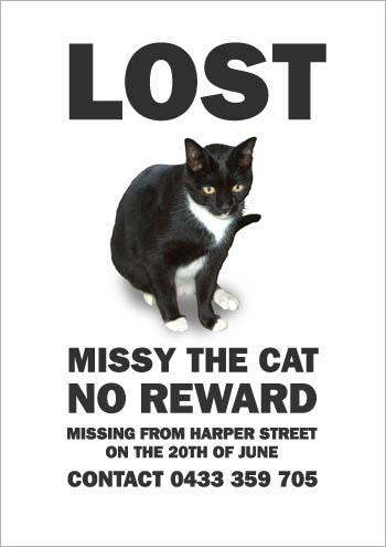 Missing Missy