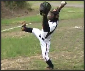 Baseball Chimp