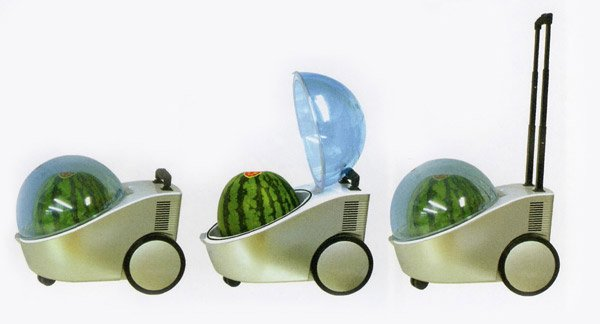 Portable Watermelon Cooler