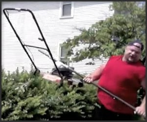 Lawnmower On A Stick