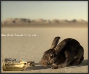Comcast Rabbit Commercial
