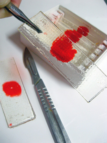 Dexter Blood Slide Candies