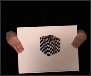 Floating Cube Illusion