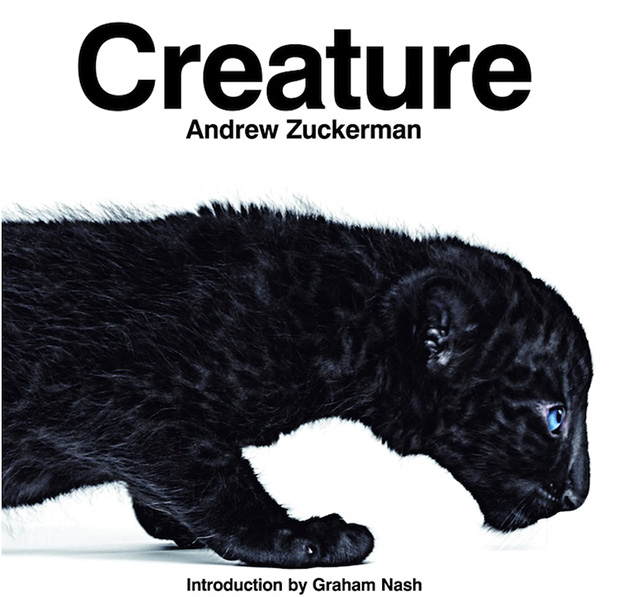 Creature (Book)