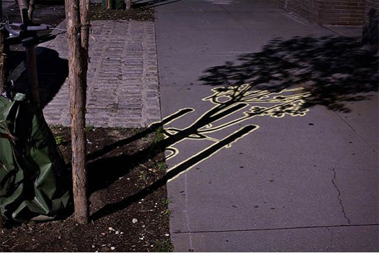 The Night Shadow Project