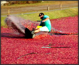 Cranberry Wakeboarding
