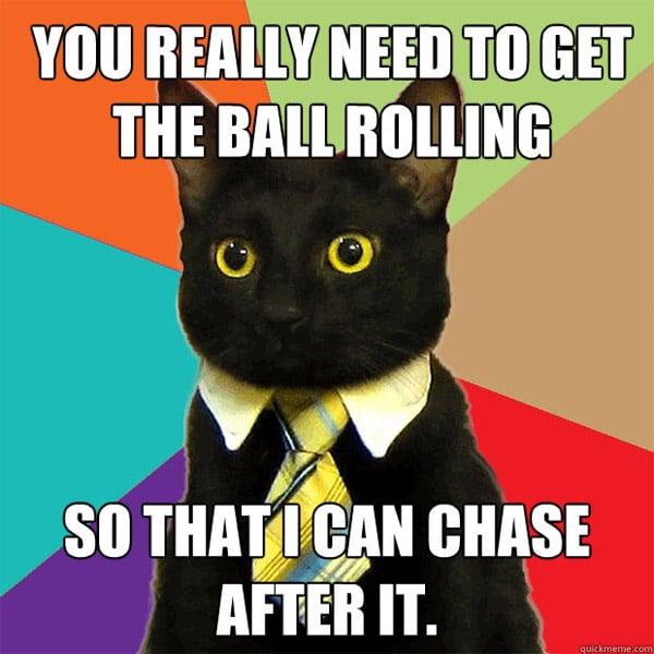 021711_business_cat_meme_2.jpg