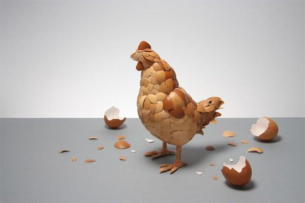 Egg Shell Chicken