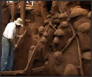Giant Ant Hill Excavation