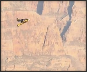Jetman over Grand Canyon