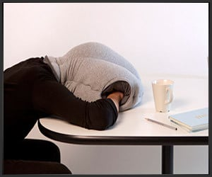 Ostrich Desk Pillow