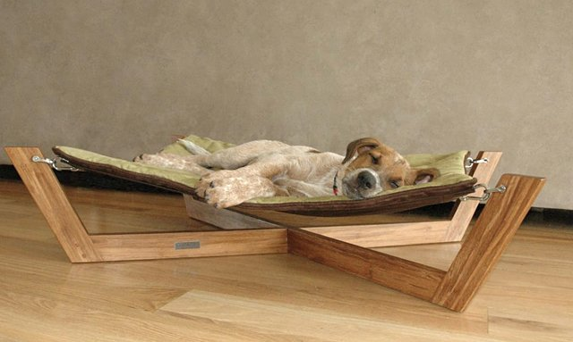 bambu pet hammock the awesomer