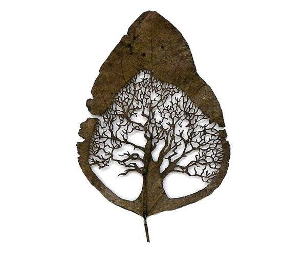 cut out leaf art