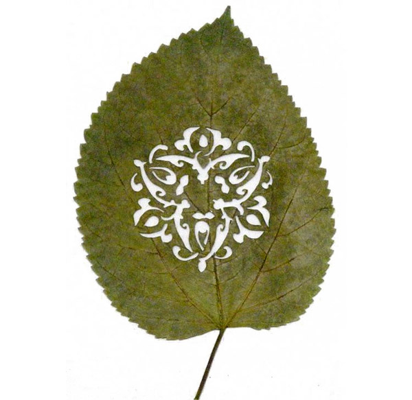 Cut-out Leaf Art