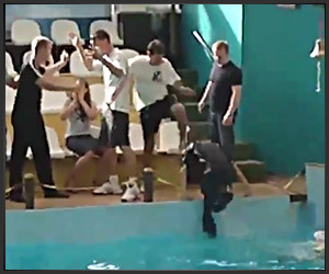 Russian Pool Brawl