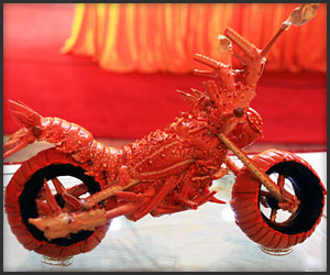 Lobster Shell Motorcycles