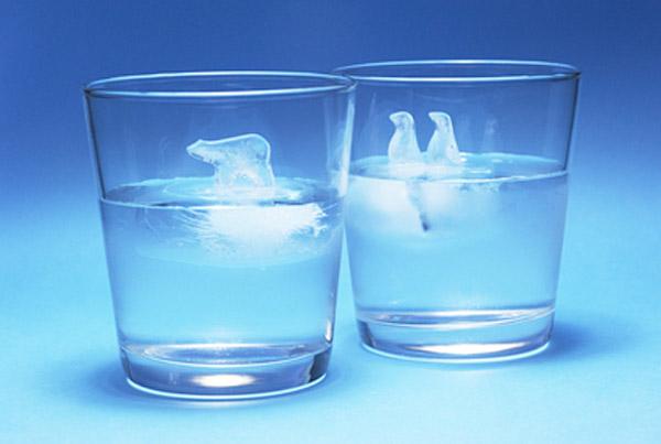 Polar Ice Cube Trays