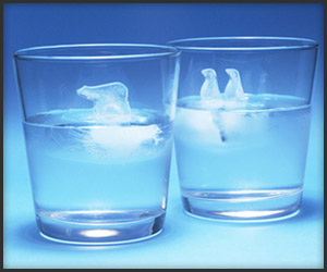 Polar Ice Cube Trays