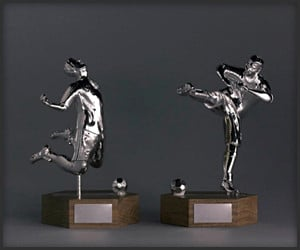 Foul Play Trophies