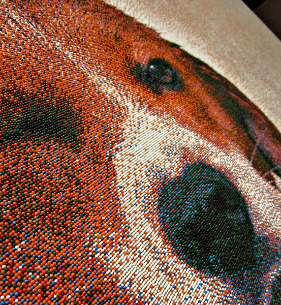 Beagle Sprinkles Portrait