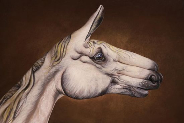 Guido Daniele: Hand Art