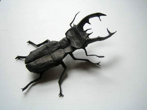 Insect Origami
