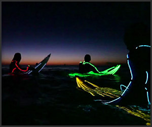 Neon Night Surfing