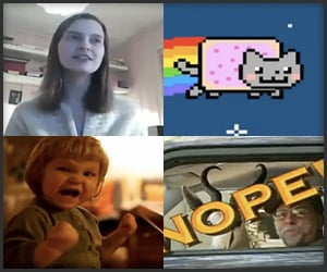 2011 Viral Video Retrospective
