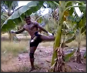 Muay Thai Guy vs. Banana Tree