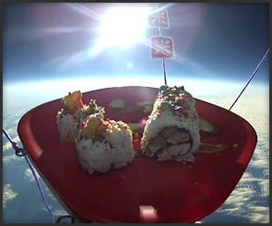 Sushi in Space