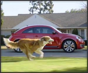 Volkswagen: Dog Strikes Back
